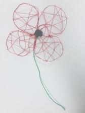 poppy 1 (3)