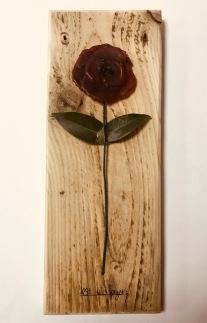 poppy 1 (4)