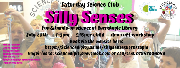 silly senses barnstaple flyer